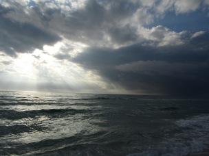 2011 FL USA